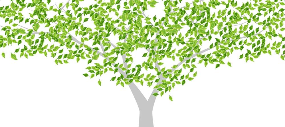 绿色清新叶子手绘